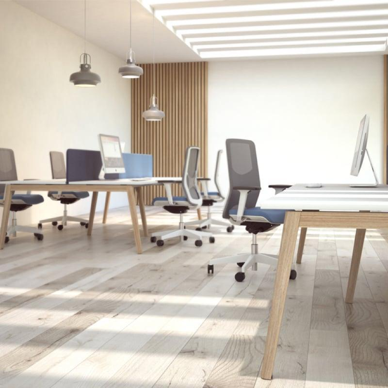 Nova Wood Desking in modern office with mesh backed office chairs